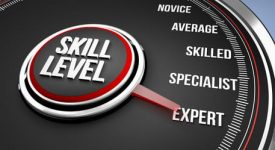 Skill Level / Expert